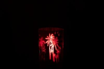 Windlicht in pink mit Palme - Größe L