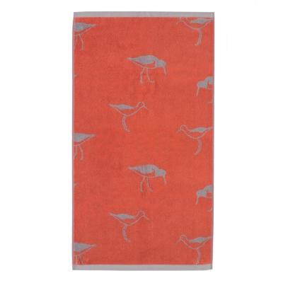 Austernfänger in grau auf orange