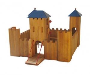 Schloss mit blauem Dach