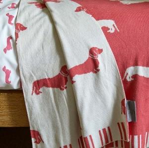rote Decke mit Dackel